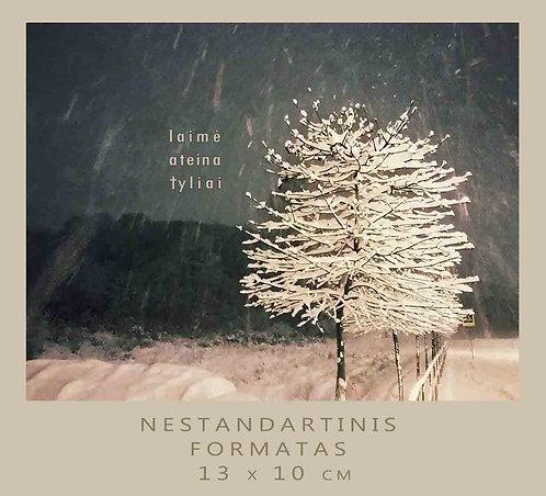 KALĖDŲ MEDELIS / WINTER TREE / 10 x13 cm