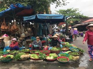 Por Que Vietnã?