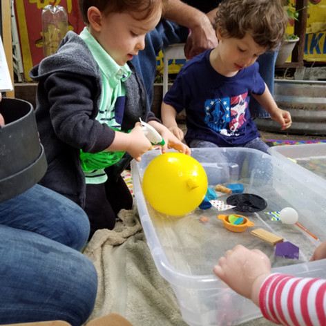 Exploring bouyancy: What sinks & what floats?