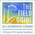 Regen economy Capital Institute.jpg