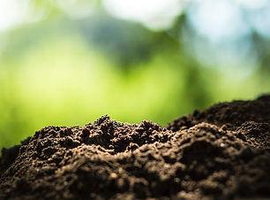 regen ag soil.jpg