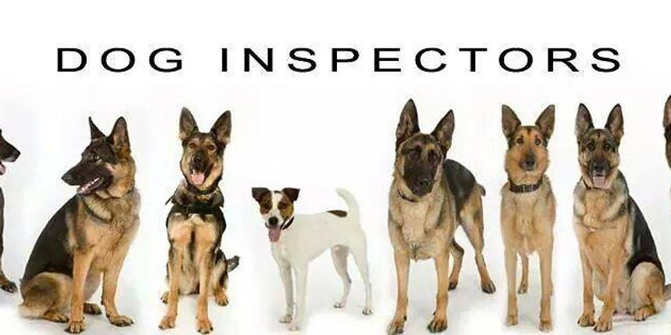 Dog Inspectors - Your Bed Bug Detectors