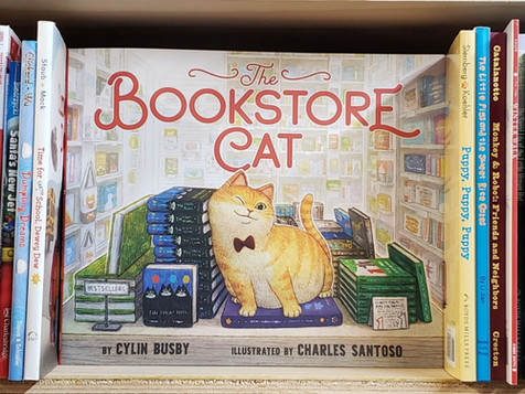 Review   The Bookstore Cat