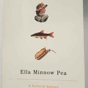 Questions   Ella Minnow Pea