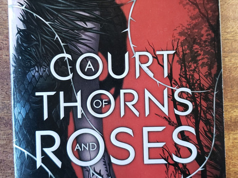Questions | A Court of Thorns and Roses