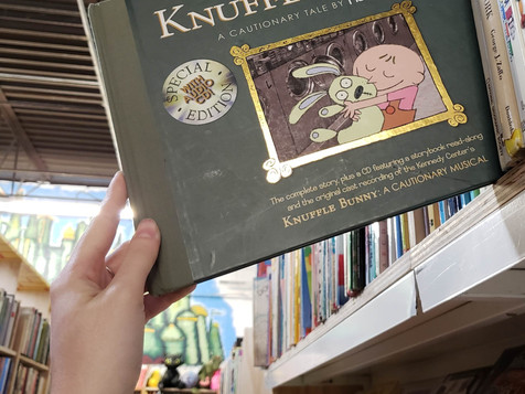 Review   Knuffle Bunny: A Cautionary Tale