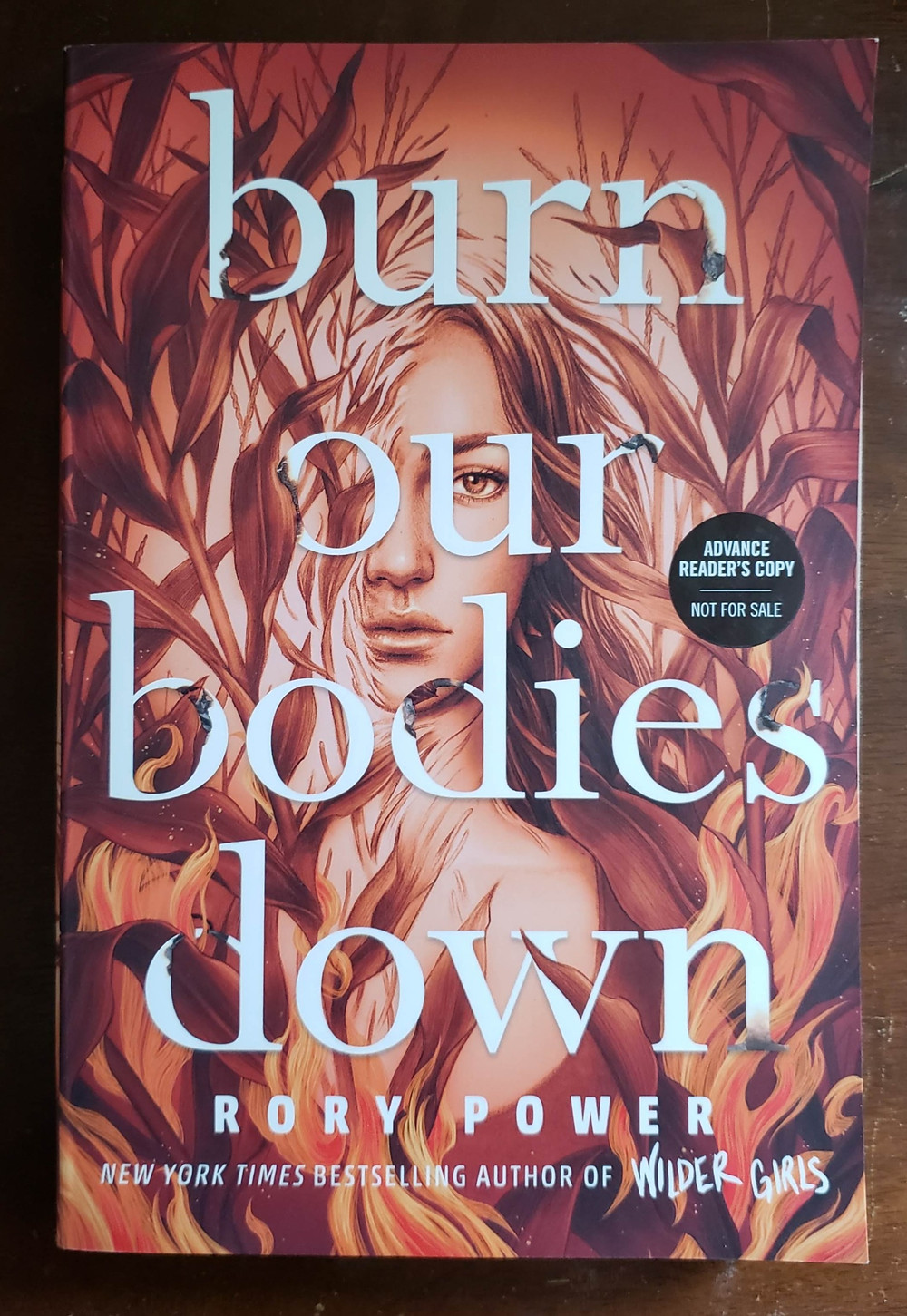 The front facing cover of the book Burn Our Bodies Down by Rory Powers.