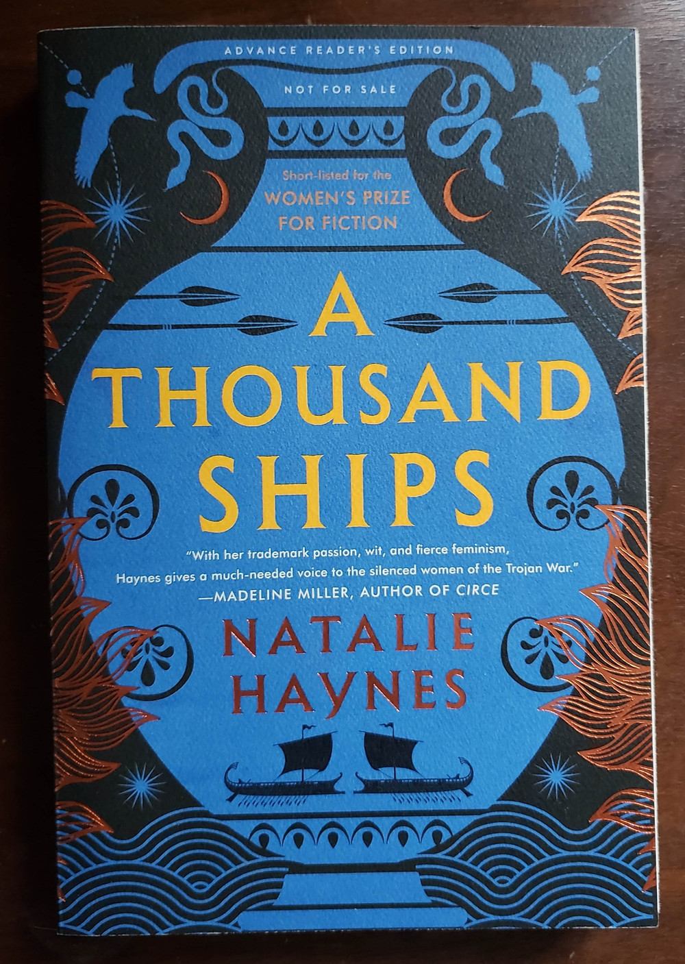 Front cover of the book A Thousand Ships by Natalie Haynes.