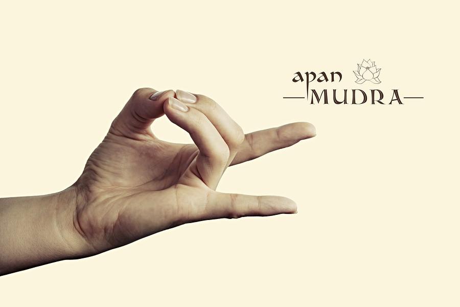 Apana hand gesture for yoga