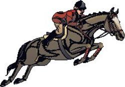 horse-rider.jpg