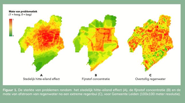 Ruimtelijke planning van ecosysteemdiensten in Leiden