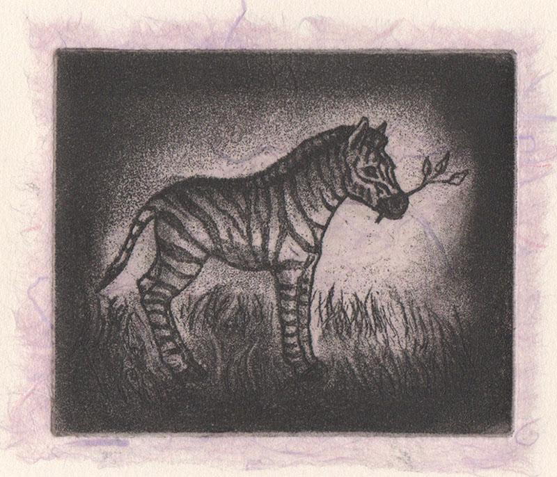Zebra Foal - pink