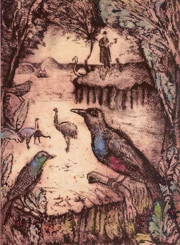 Aimee Birnbaum -Darwin's creatures 2