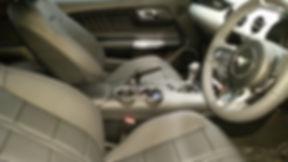 Mustang Int.jpg