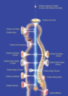 InstittoPrnaterapia - Sistema de 11 Chakras