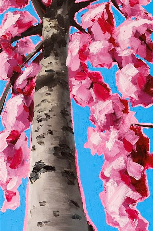 Looking up the Tallest Pink Blossom to the Future