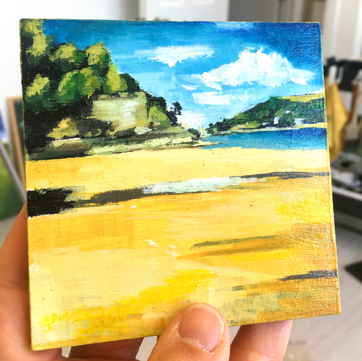 South Sands beach in my hands.jpg