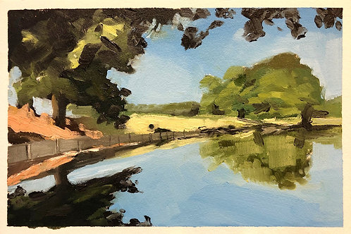 Richmond Park, the last days of summer