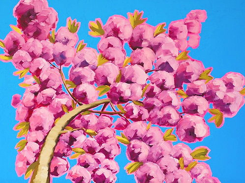 Looking Up a Pink Tree in the wind to Resilience
