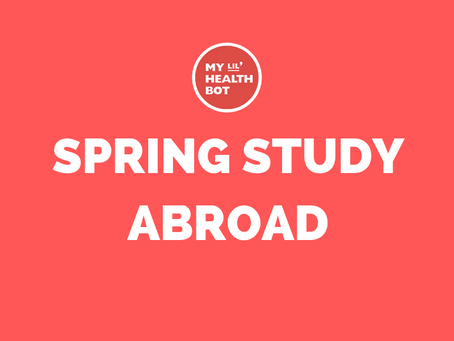 Studying Abroad in Europe?