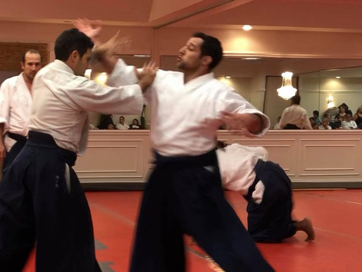 Self Defense in Aikido