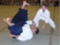 Clearwater Martial Arts, Aikido, Traditional Martial Arts