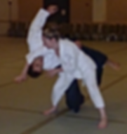 Dues and Policy | United States | Aikido of Pinellas County