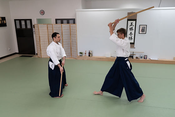 ©COPYRIGHT_All_Photos_Considered_Aikido