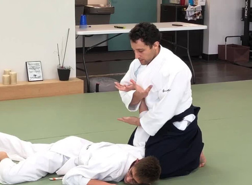 My Thoughts on Sensei's Interview with Aikido Journal