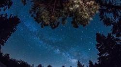 Spring-Milky-Way-1-6-3-14