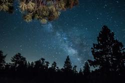 Spring-Milky-Way-2-6-3-14