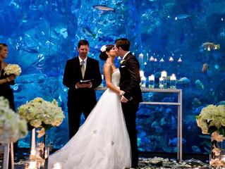"""17 идеи за """"Модерена"""" сватба"""