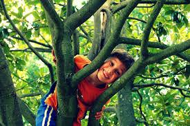 jeu nature enfant.jpg
