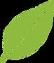 leaf.png