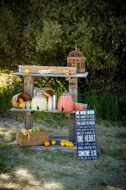 Catering Lemonade Stand
