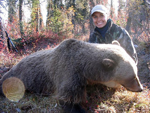Alaska Grizzly Bear Hunt
