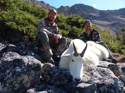 British Columbia Mountain Goat Hunt