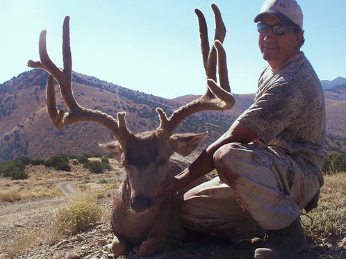 Nevada Mule Deer Hunt - Unit 102