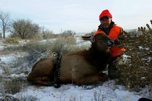 Utah Cow Elk Hunt