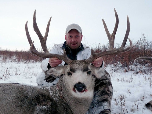 Montana Mule Deer Hunt