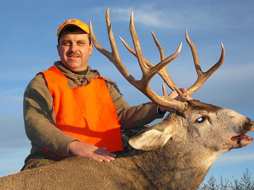 Colorado Mule Deer Hunt