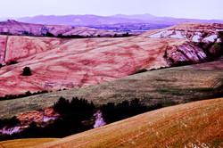 09062005-Toscane 041 - kopie.jpg