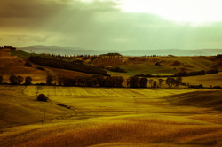 09062005-Toscane 215.jpg