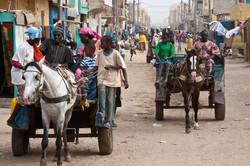 Senegal_084.jpg