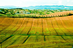09062005-Toscane 216-2.jpg