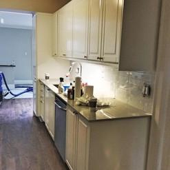 small light kitchen in Toronto