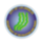 RAPcircle_logo_png.png