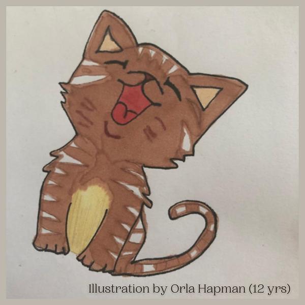 OrlaHapman_Illustration.png