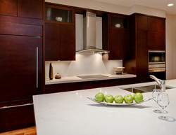 Contemporary Penthouse Renovation