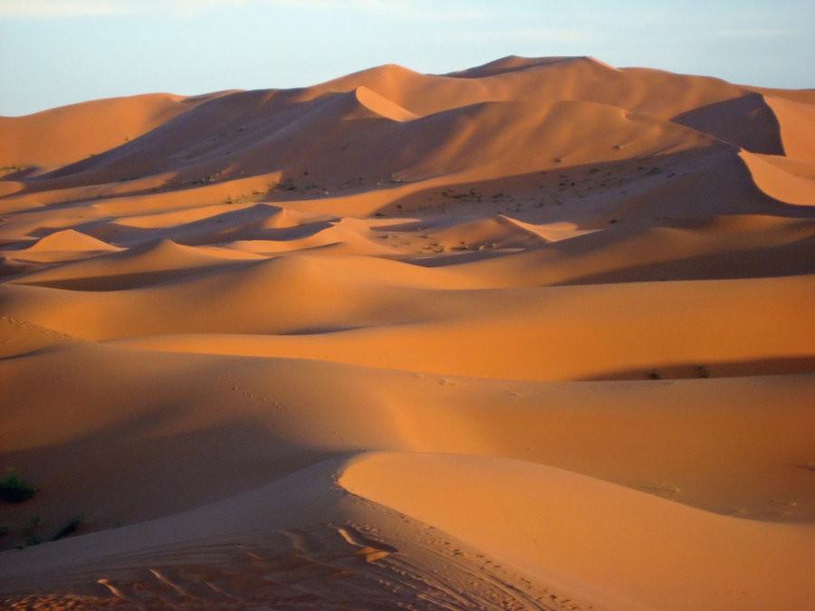 sahara_desert_3397524_by_stockproject1-d3hz8yp.jpg